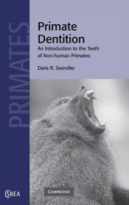 Primate Dentition: An Introduction to the Teeth of Non-Human Primates