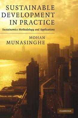 Sustainable Development in Practice: Sustainomics Methodology and Applications