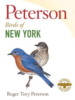 Peterson Field Guide to Birds of New York (PagePerfect NOOK Book)