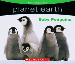 Baby Penguins (Planet Earth)