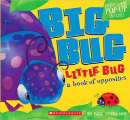 Big Bug, Little Bug: A Book of Opposites