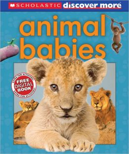 Animal Babies (Scholastic Discover More Series)