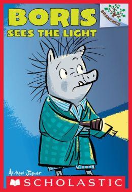 Boris #4: Boris Sees the Light (A Branches Book)