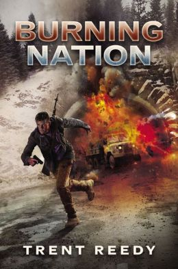 Divided We Fall Book 2: Burning Nation
