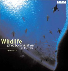 Wildlife Photographer of the Year 11