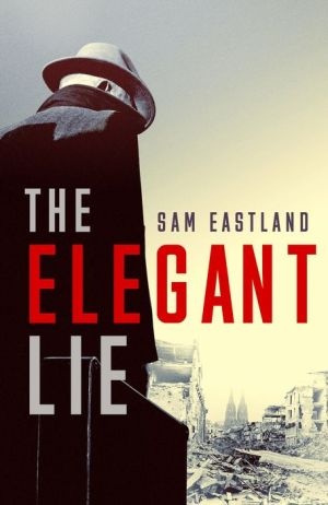 Book The Elegant Lie: A Novel