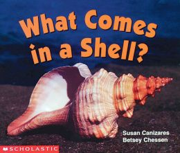 What Comes in a Shell?