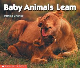 Baby Animals Learn