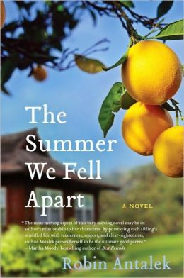 Summer We Fell Apart: A Novel