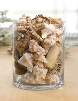 Shells Natural Ocean Scented Potpourri in Bag 8 oz.