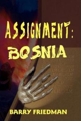 Assignment: Bosnia