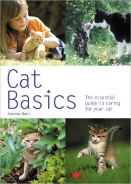 Cat Basics: The Essential Guide to Caring for Your Cat