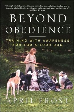Beyond Obedience: Training with Awareness for You and Your Dog
