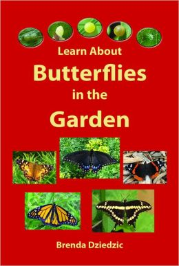 Learn about Butterflies in the Garden