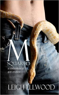 M-Squared: A Collection of Gay Erotica