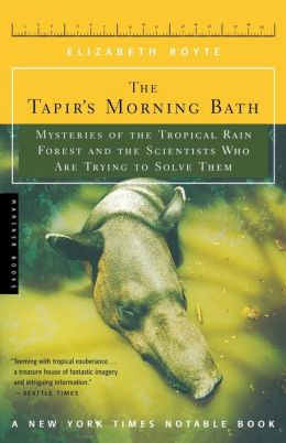 Tapir's Morning Bath