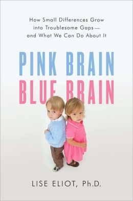 Pink Brain, Blue Brain: How Small Differences Grow Into Troublesome Gaps -- And What We Can Do About It