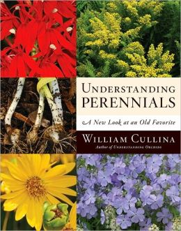 Understanding Perennials: A New Look at an Old Favorite