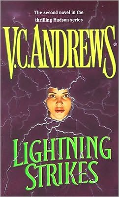 Lightning Strikes (Hudson Series #2)