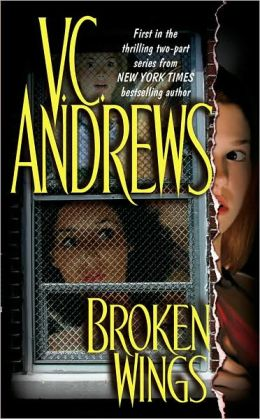 Broken Wings (Broken Wings Series #1)