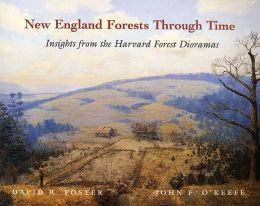 New England Forests Through Time: Insights from the Harvard Forest Dioramas