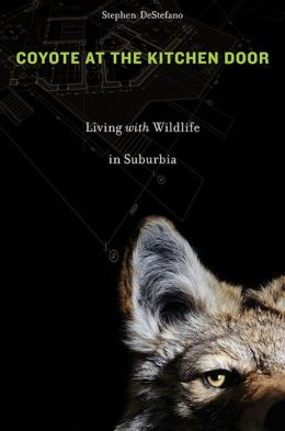Coyote at the Kitchen Door: Living with Wildlife in Suburbia