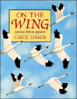 On the Wing: American Birds in Migration