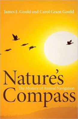 Nature's Compass: The Mystery of Animal Navigation