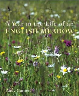 Year in the Life of an English Meadow