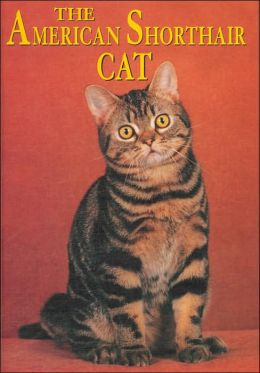 The American Shorthair Cat (Learning about Cats Series)