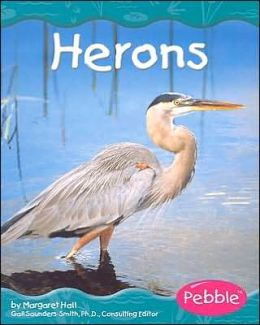 Wetland Animals: Herons