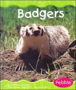 Grassland Animals: Badgers