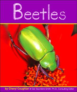 Beetles (Insects Series)
