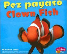 Pez Payaso/Clown Fish