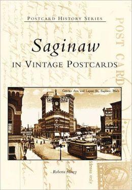 Saginaw in Vintage Postcards, Michigan (Postcard History Series)