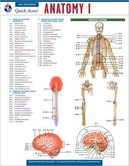 Quick Access: Anatomy 1