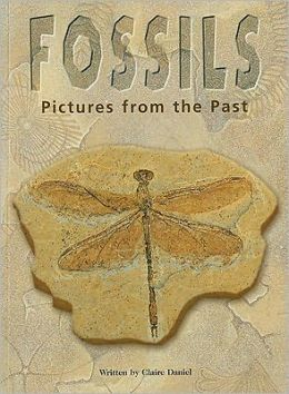 Fossils: Pictures from the Past