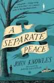 Book Cover Image. Title: A Separate Peace, Author: John Knowles