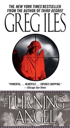 Turning Angel (Penn Cage Series #2)