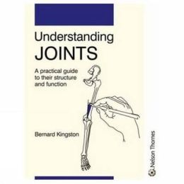 Understanding Joints: A Practical Guide to Joint Function