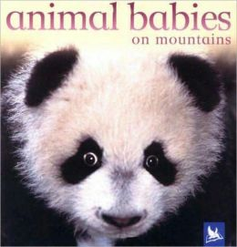 Animal Babies on Mountains
