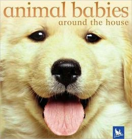 Animal Babies Around the House
