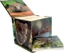 Woodland Wildlife Memo Cube Plus Cards