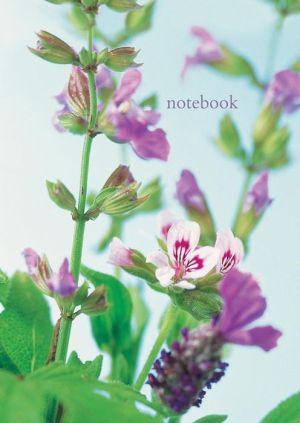 Notebook: Scented Geranium