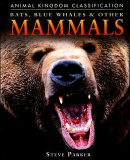 Bats, Blue Whales, and Other Mammals