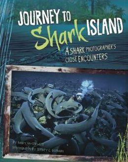 Journey to Shark Island: A Shark Photographer's Close Encounters