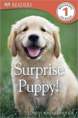 Surprise Puppy (DK Readers Series Level 1)