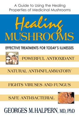 Healing Mushrooms: Effective Treatments for Today's Illnesses