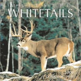 2009 Majestic Whitetails Wall Calendar
