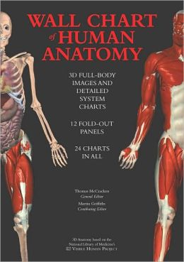 Wall Chart of Human Anatomy: 3D Full-Body Images and Detailed System Charts